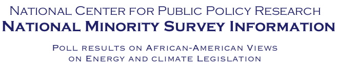 National Minority Energy Survey