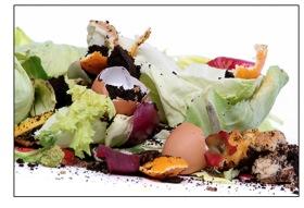 Compost_iStockW