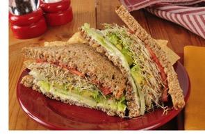 Vegetable_sandwich_LW